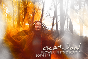 Flower in its Decay by crestwood